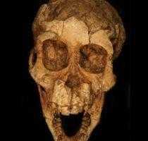 Микро человечки жили 3 миллиона лет назад.